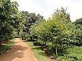 Kunming Botanical Garden - DSC03266.JPG