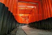 Torii form an archway at Fushimi Inari Shrine.