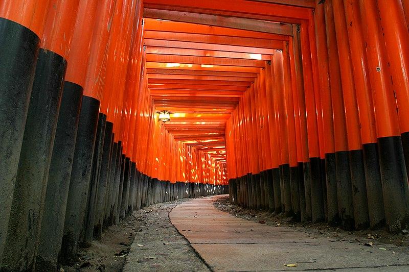 京都の脳卒中
