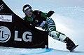 LG Snowboard FIS World Cup (5435938848).jpg