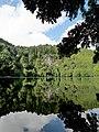 Lagoa do Congro - S. Miguel - Açores (51383138006).jpg