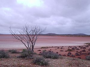 Lake Gairdner - Extreme southern reaches of Lake Gairdner