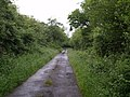 Lane crossing Little Claw Moor - geograph.org.uk - 468437.jpg