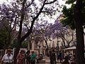 Largo do Carmo (14403241975).jpg