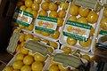 Lemons of Afghanistan.jpg