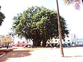 Leste Vila Nova, Goiânia - GO, Brazil - panoramio (4).jpg