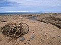 Lhen trench. Isle of Man - geograph.org.uk - 32074.jpg