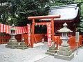 Lisy przed chramem shintoistycznym.JPG