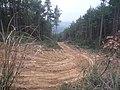 Lizhou, Guangyuan, Sichuan, China - panoramio - Leeshan Chung (1).jpg