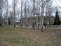 Lociki, Naujene Parish, Latvia - panoramio - alinco fan (22).jpg