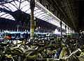 London Paddington Station 01.jpg