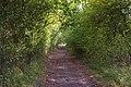 Long Green - geograph.org.uk - 564429.jpg
