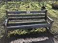 Long shot of the bench (OpenBenches 4358-1).jpg