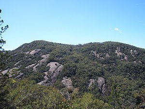 Burrowa-Pine Mountain National Park - Pine Mountain, located within the park.