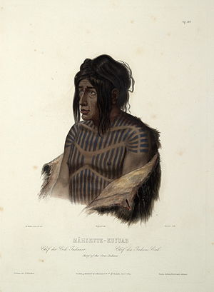 Mähsette Kuiuab Chief of the Cree indians