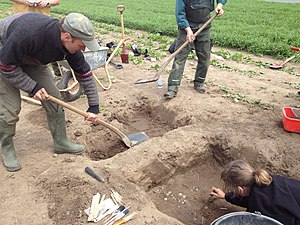 Archaeology of Denmark - A treasure of medieval coins is being uncovered at the island of Møn.