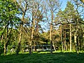 MD.ED.Hincăuți - park of Hincăuți - apr 2018 - 02.jpg