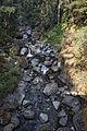 MRNP — Nickel Creek.jpg