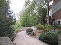 MSU 2014 Botanical Garden Path.jpg