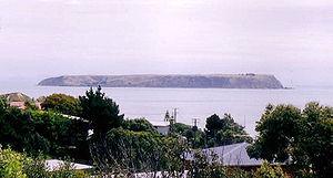 Mana Island (New Zealand) - Mana Island seen from Porirua.