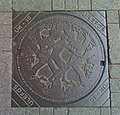 Manhole - Odense.jpg