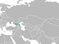 Map-Kypchak-Kuman Language World.png