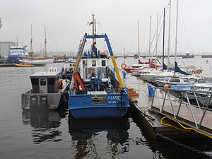 Mare Port of Registry Tallinn 15 July 2012.JPG