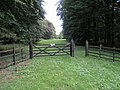 Mausoleum Woods - geograph.org.uk - 236205.jpg