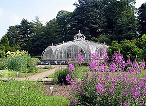 Botanic Garden Meise - The Balat greenhouse
