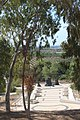 Memorial to the Jewish Fighting Women IMG 6316.JPG
