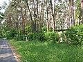Mierzwice - panoramio.jpg