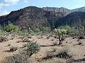 Mineral mountains arizona.jpg