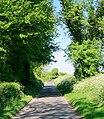 Minor Road on Wheely Down - geograph.org.uk - 441436.jpg