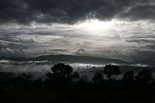 Misty morning03.jpg