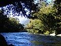 Moeraki River Westland Aotearoa New Zealand.jpg