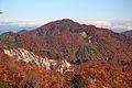 Mount Daimon from Mount Ogasa.jpg