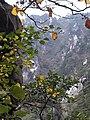 Mount Zherenfeng in Tiantangzhai Forest Park 3.JPG