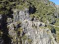 Mountain Side Walkway Near Mount Cook.jpg