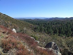 California coastal sage and chaparral ecoregion - Chaparral and pine forests in the Cleveland National Forest
