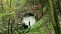 Mouth of disused railway tunnel - geograph.org.uk - 996056.jpg