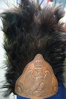 Bearskin style of cap made from bearskin