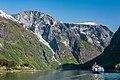 Nærøyfjord near Bakka (22932623273).jpg