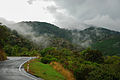 NZ State Highway 6 near Hira, Nelson 20100122 3.jpg