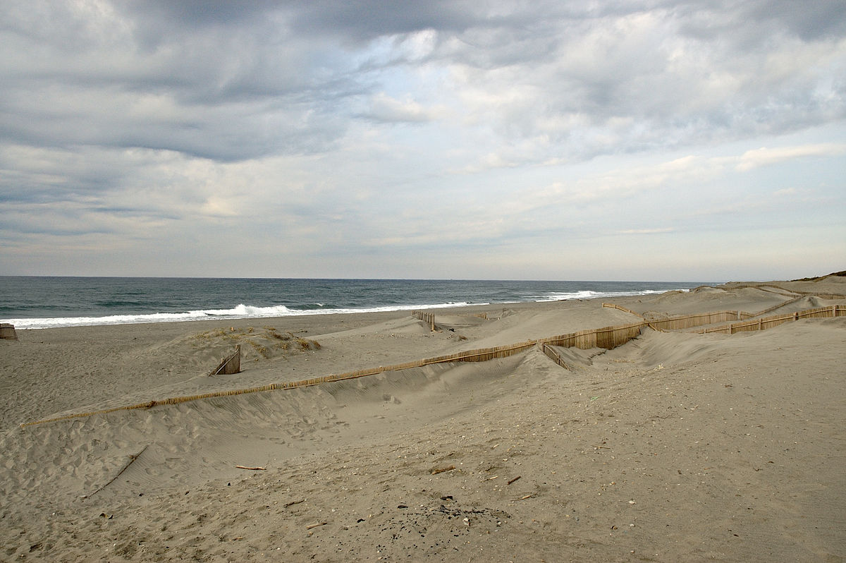Sand fence - Wikipedia
