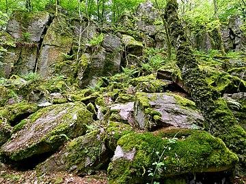 Naturdenkmal Krautfelsen Mettlach-Orscholz.jpg