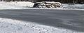 Natuurterrein The nature Famberhorst. Incident thaw. Invallende dooi.JPG