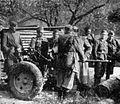 Nemcem zaplenjeni avtomatski top 20 mm.jpg