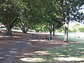 New Farm Park, picnic facilities.jpg