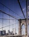 New York World Trade Center View, New York, New York LCCN2011631200.tif