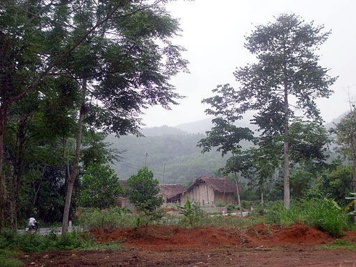 Nhà ven đường